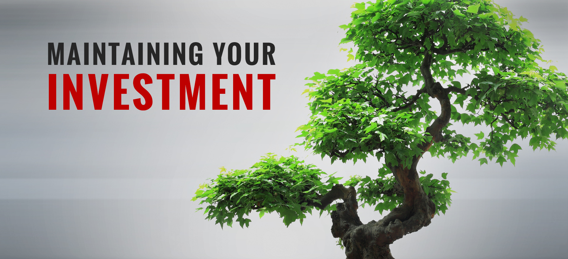 Maintaining your investment.